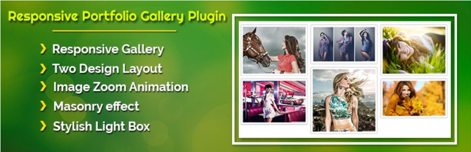 Responsive Portfolio Album Carousel WordPress Gallery Plugin