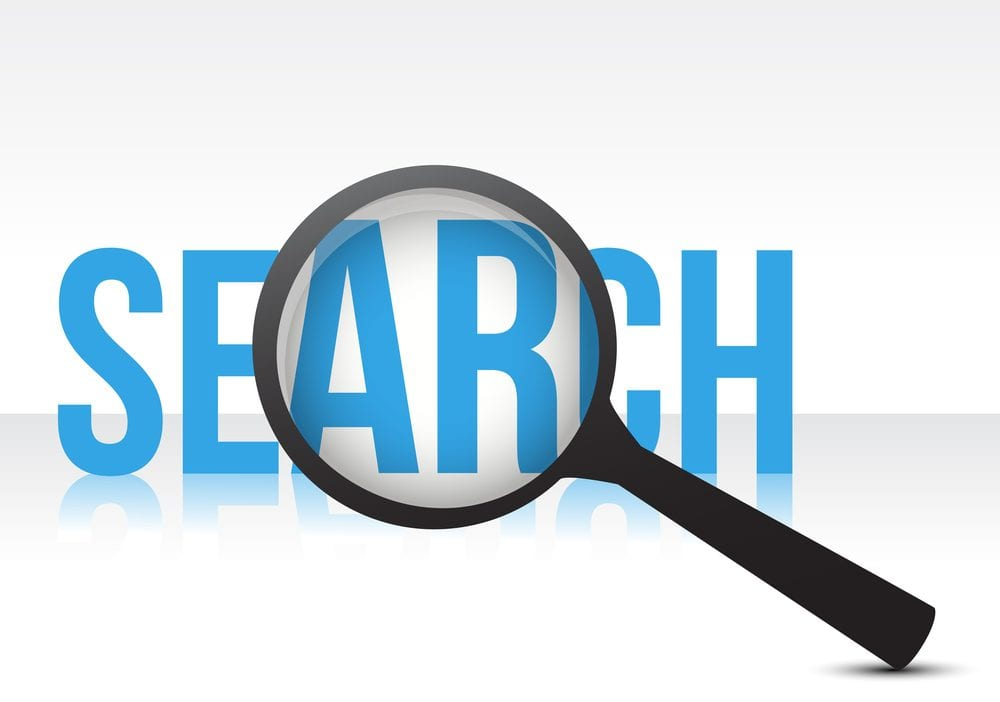WordPress Search plugin