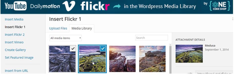 Remote Media Libraries _ WordPress.org