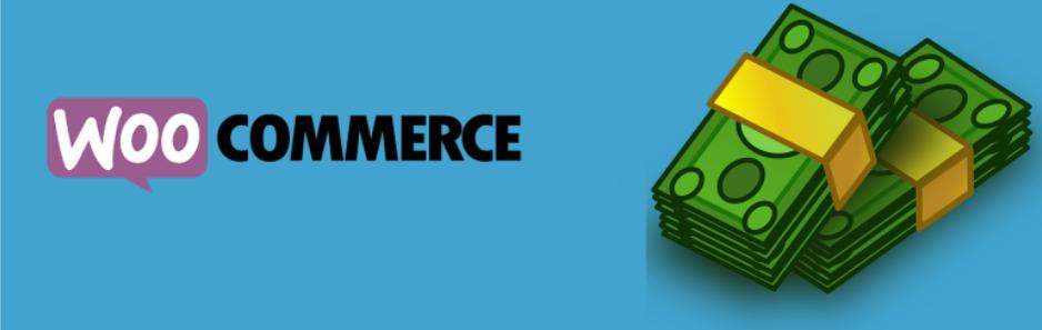 WooCommerce Custom Payment Gateway _ WordPress.org