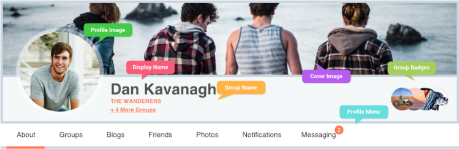 ProfileGrid – User Profiles, Groups and Communities _ WordPress.org