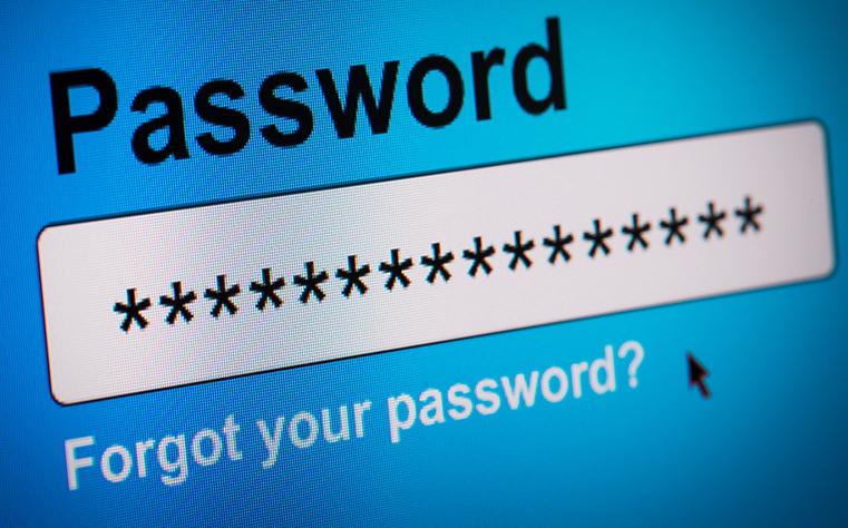 WordPress Password pluign