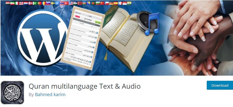 wordpress language plugin