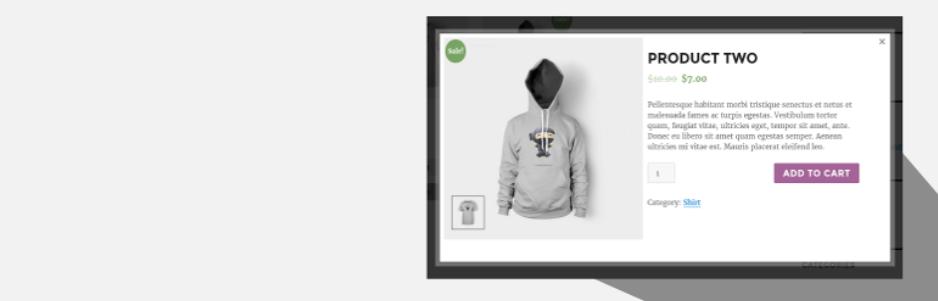 9 Best WooCommerce Quick View Plugin 2021
