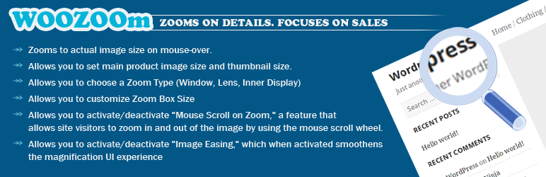 Top 8 Awesome WordPress Image Zoom Plugins in 2021