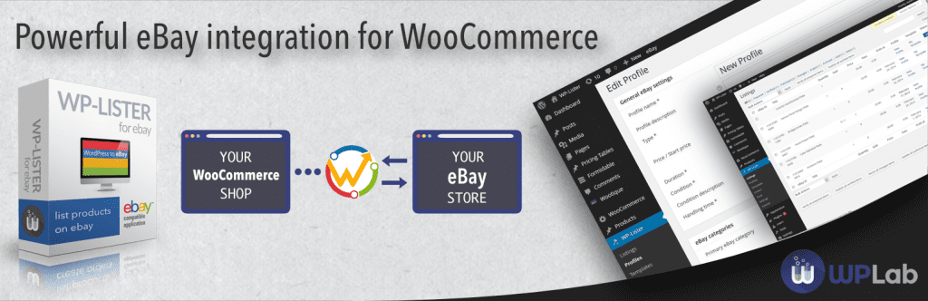 wordpress ebay plugins 2