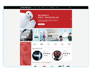Top 20 WordPress eCommerce Theme In 2021