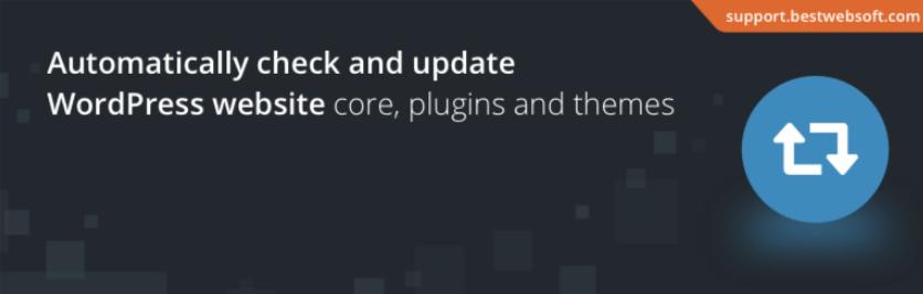 Top 9 Nice WordPress Auto-update Plugin In 2021