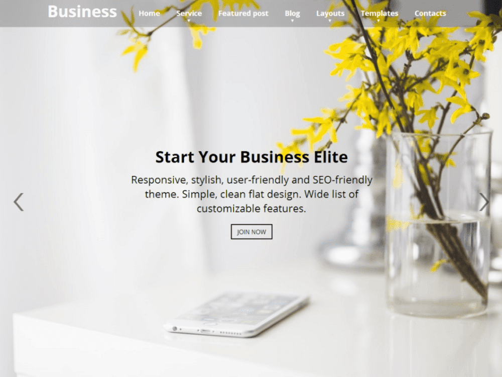 Free Business Elite Wordpress Theme