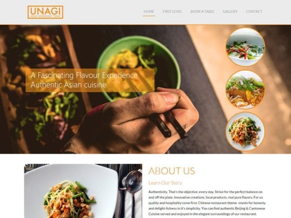 Free Chinese Restaurant Wordpress theme