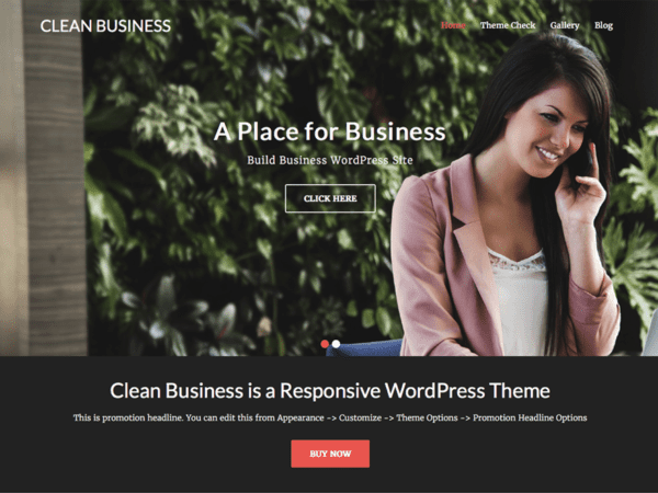 Free Clean Business Wordpress theme