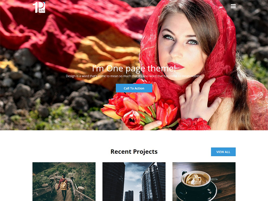 Free One Paze Wordpress theme