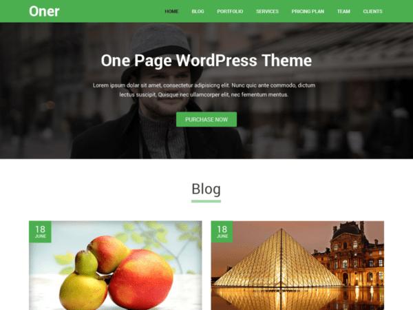 Free Oner Wordpress theme