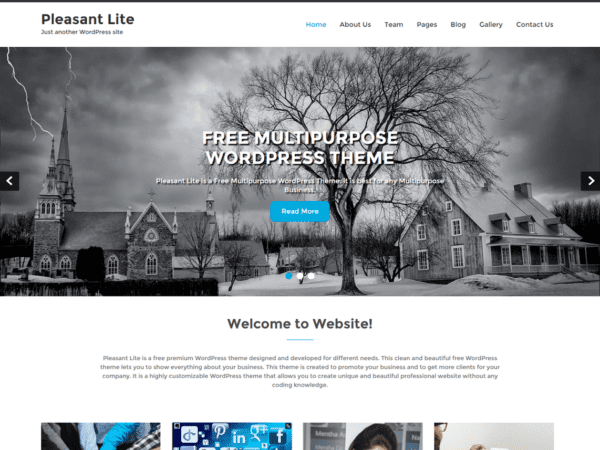 Free Pleasant Lite Wordpress theme