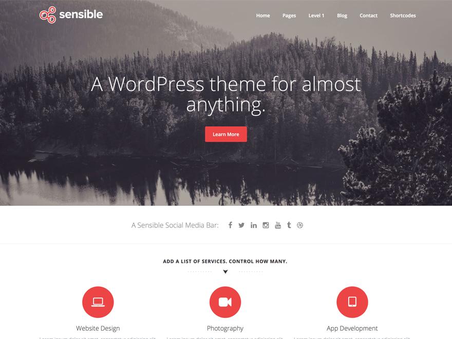 Free Sensible WP Wordpress theme