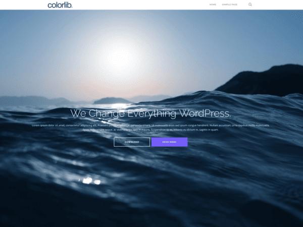 Free Shapely Wordpress theme
