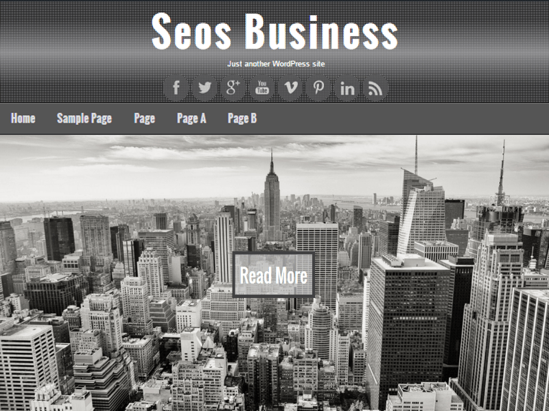 Free Seos Business WordPress theme