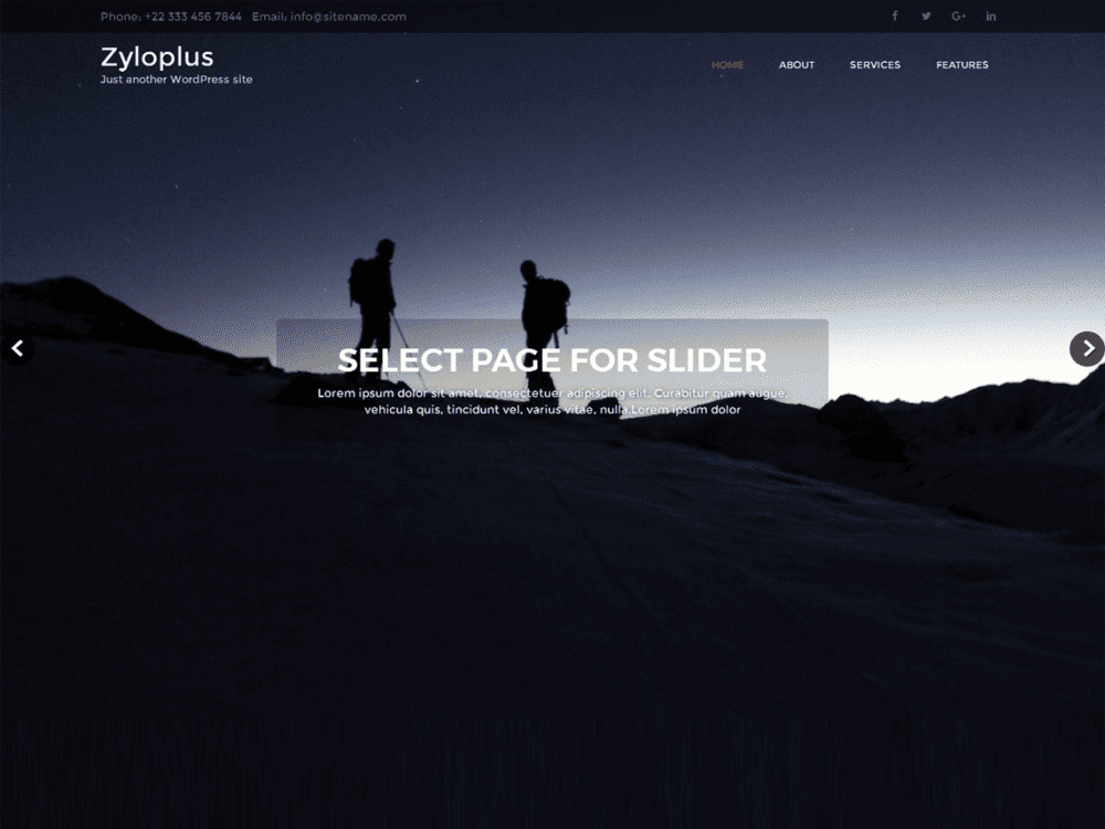 Free Zyloplus Wordpress theme