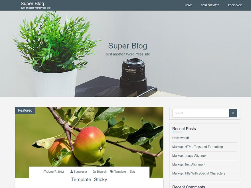 Free Super Blog Wordpress Theme
