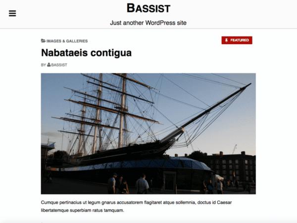 Free Bassist Wordpress Theme