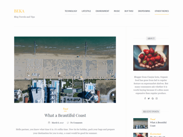 Free Beka Wordpress Theme
