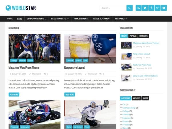 Free WorldStar Wordpress Theme
