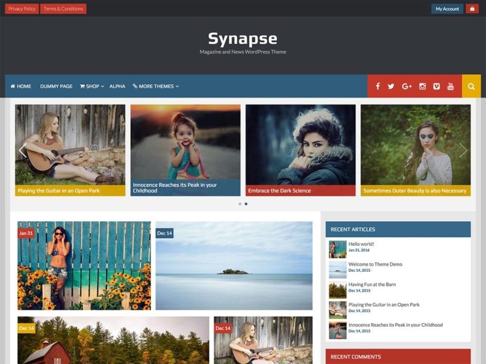 Free Synapse Wordpress Theme