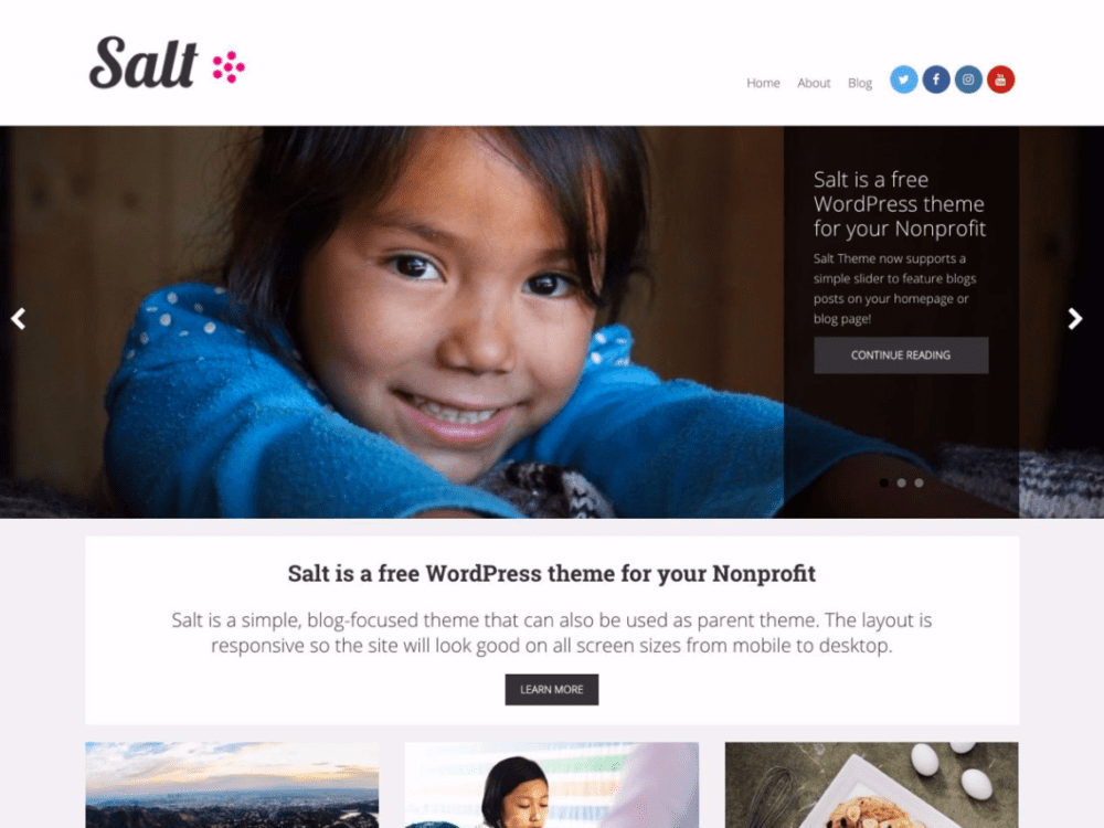 Free Salt Wordpress Theme