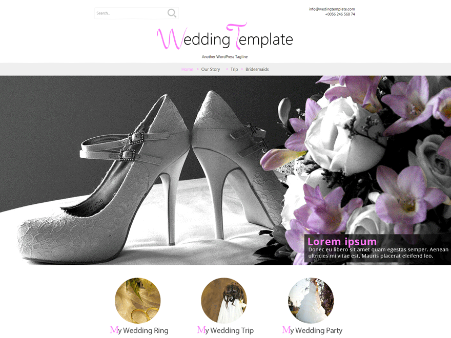 Download Free Wedding Style Wordpress Theme Justfreewpthemes