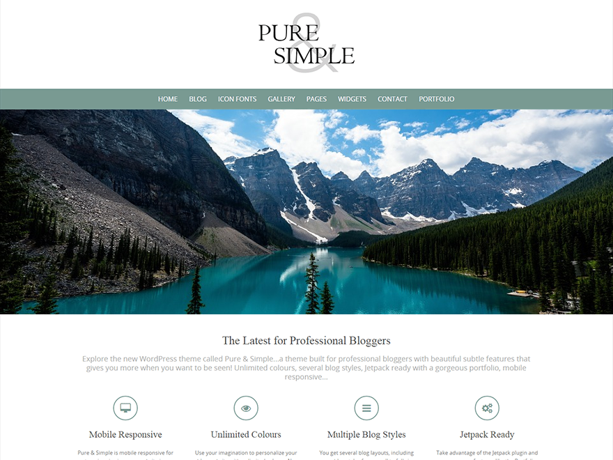 Download Free Pure & Simple WordPress theme - JustFreeWPThemes