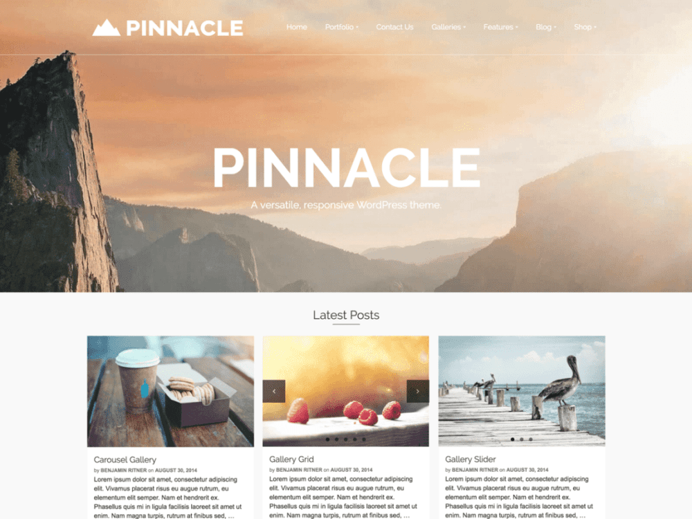 download free pinnacle wordpress theme justfreewpthemes