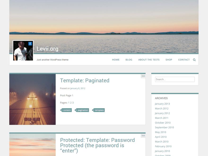 Download Free Levii WordPress theme - JustFreeWPThemes