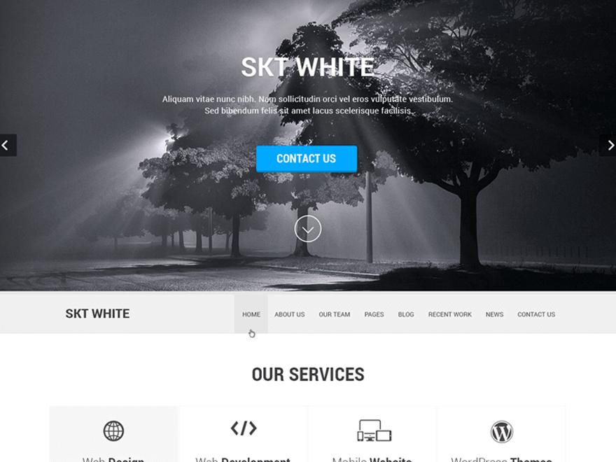 Download Free Skt White Wordpress Theme Justfreewpthemes