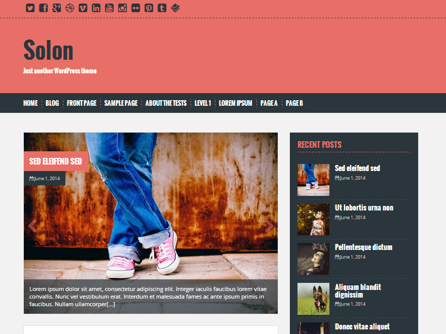 Download Free Solon WordPress theme - JustFreeWPThemes