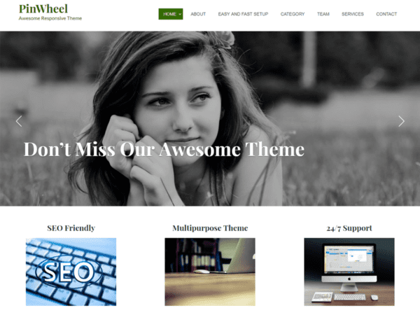 Free Pinwheel WordPress theme