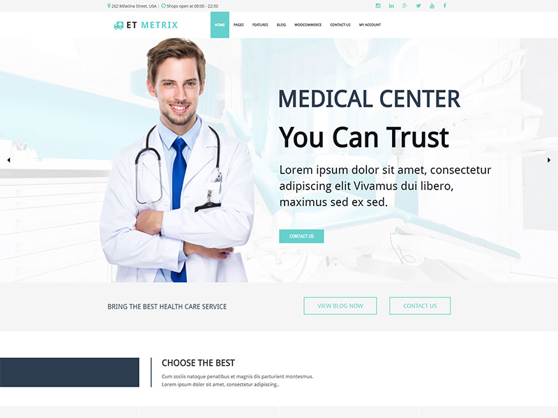 Free ET Metrix Wordpress