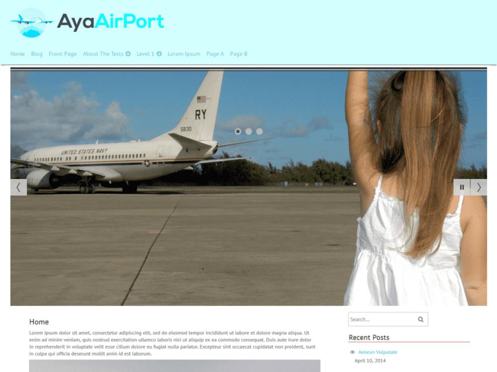 Free AyaAirPort Wordpress Theme