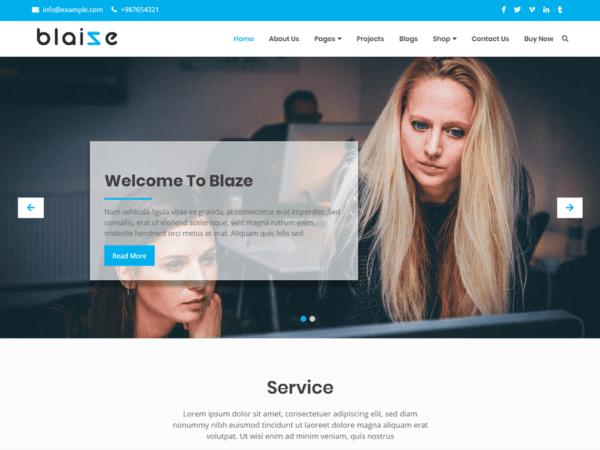 Free Blaize Wordpress theme
