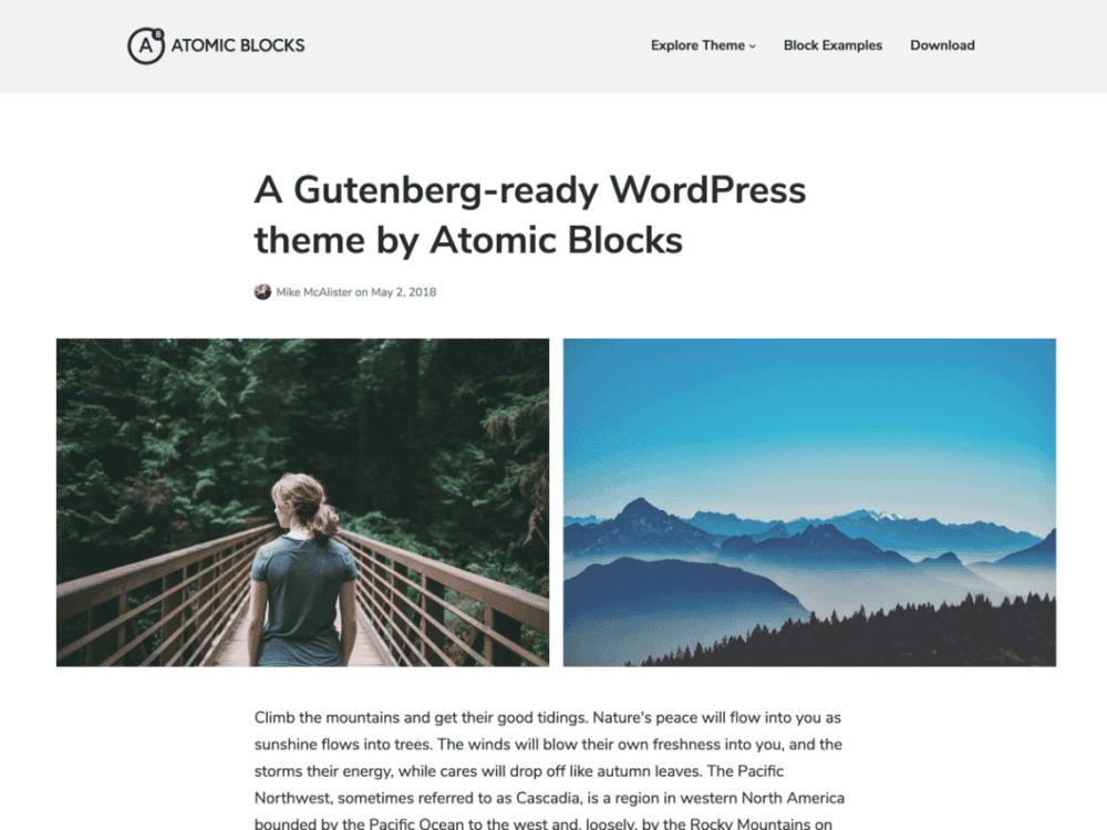 Free Atomic Blocks Wordpress theme