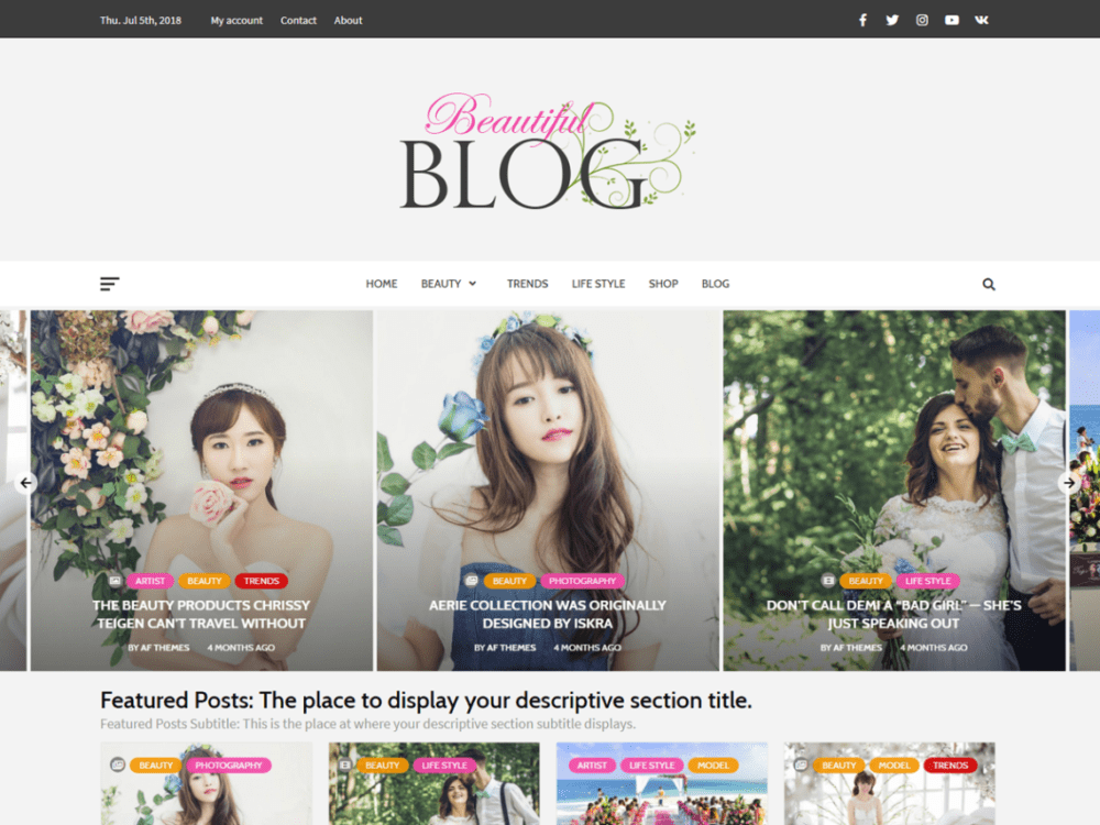 Free Beautiful Blog Wordpress theme