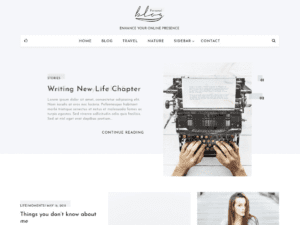 Free Blog Personal WordPress theme