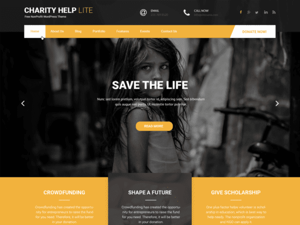 Free Charity Help Lite Wordpress theme