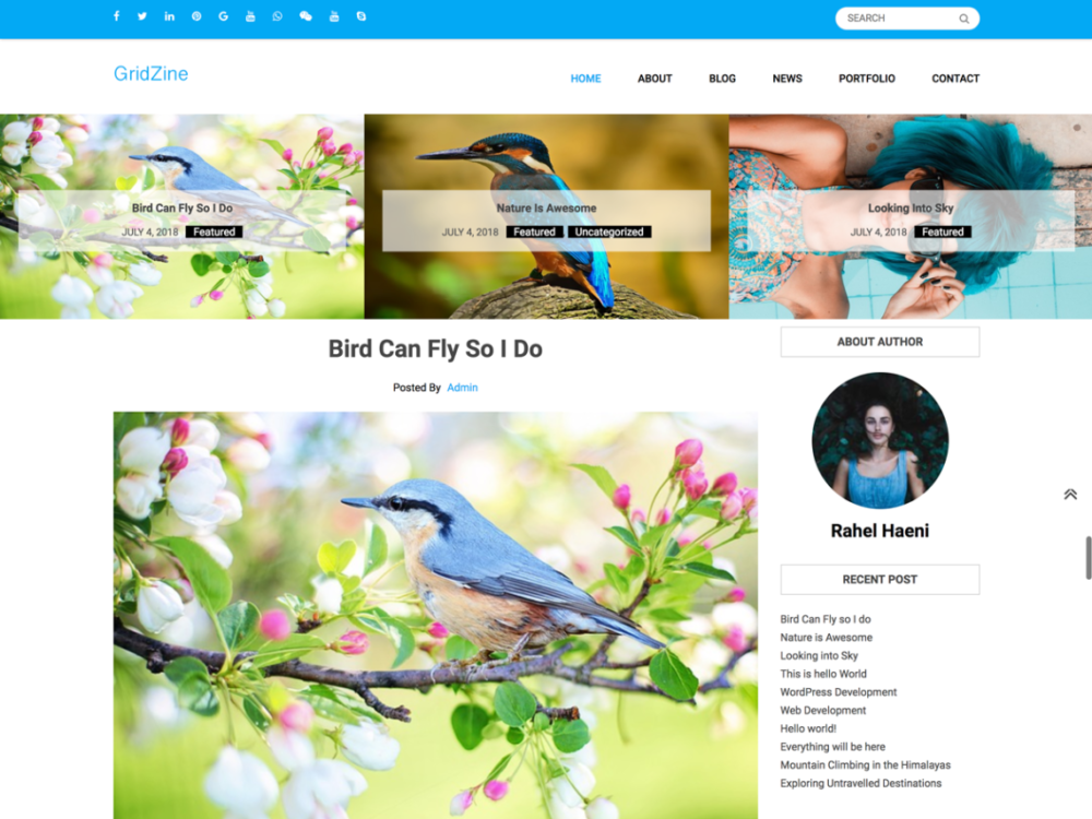 Free Gridzine Wordpress theme