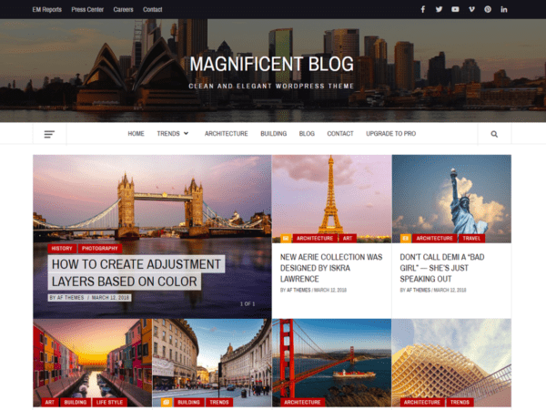 Free Magnificent Blog Wordpress theme