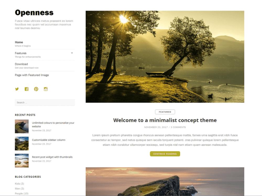 Free Openness Wordpress theme