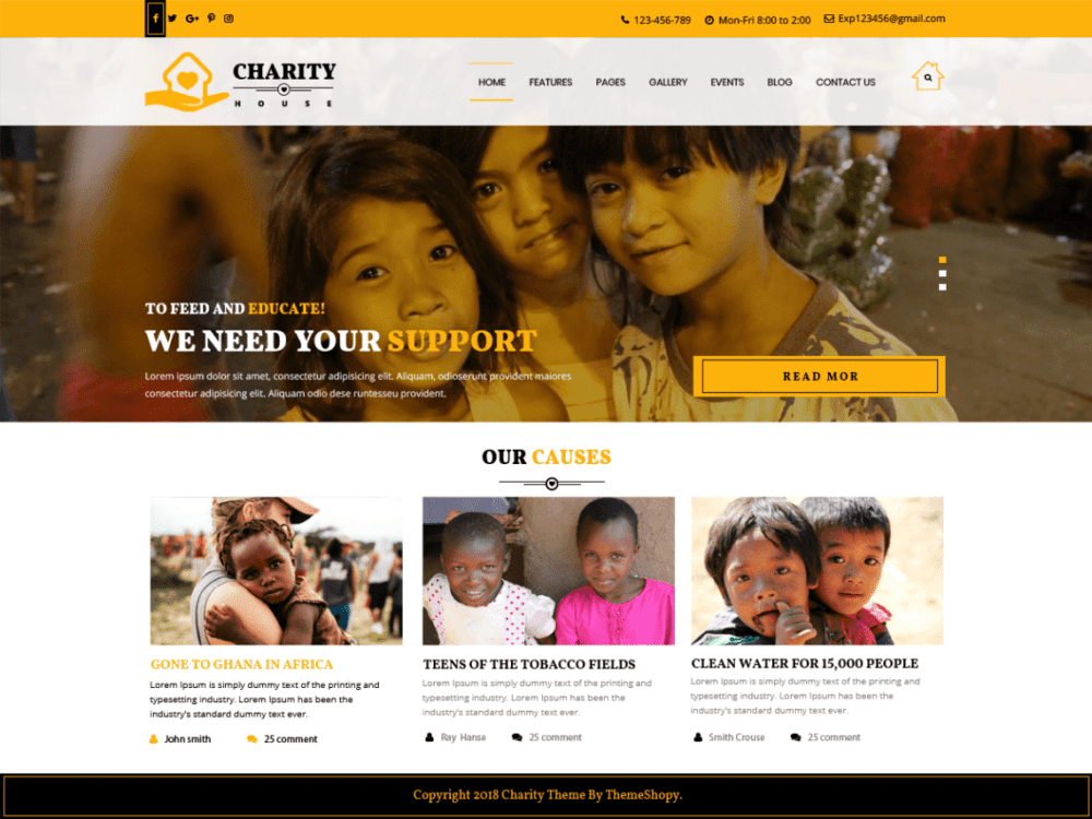 Free TS Charity Wordpress theme