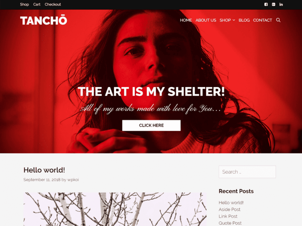 free tancho wordpress theme