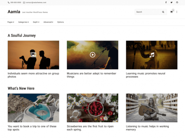 Free Aamla WordPress theme