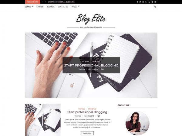 Free Blog Elite WordPress theme