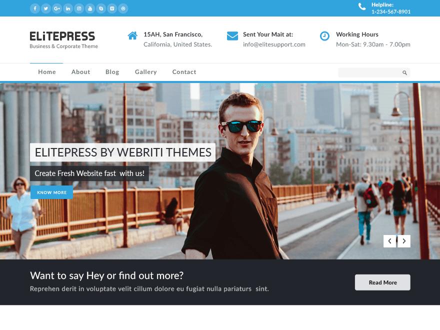 Free ElitePress WordPress theme